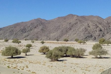Life at an archaeological dig in the Egyptian desert